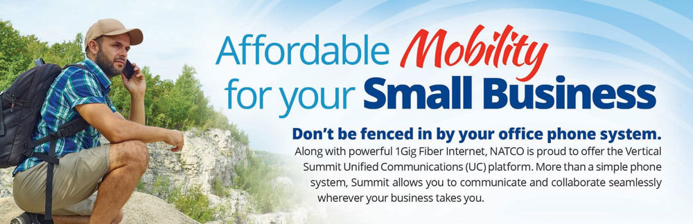 Affordable Mobility for your Small Business