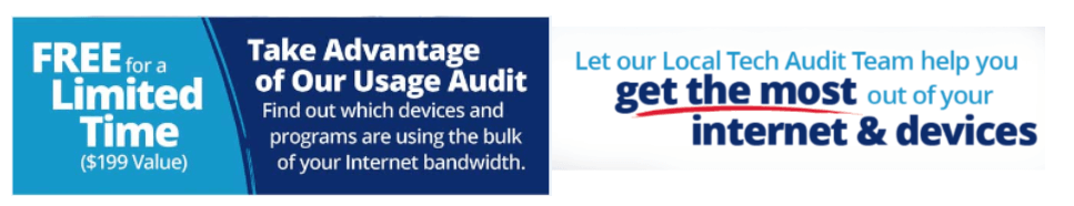 Take full advantage of our Internet Usage Audit